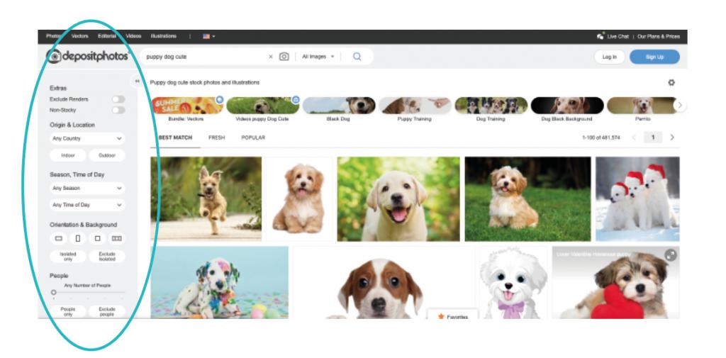 חיפוש במאגרי תמונות עיצוב